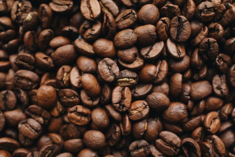 kaffe bønner Fuzhou Holstebro